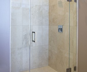Shower Doors & Panels (796)