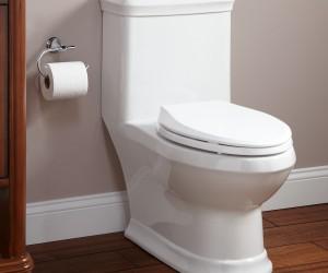 Toilets (387)